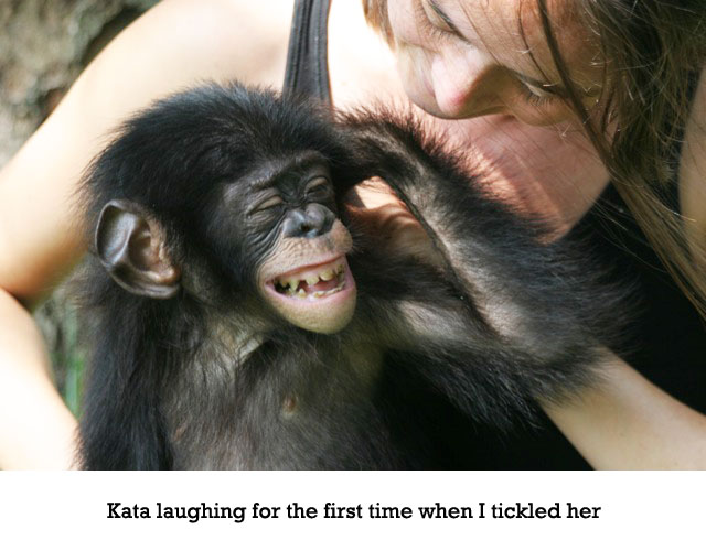 kata-laughing2